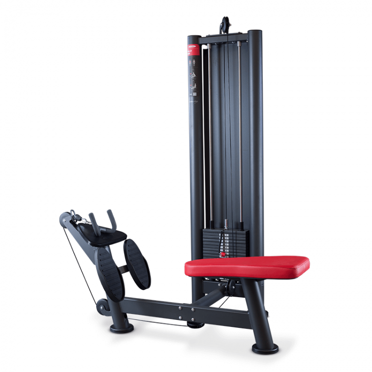 Pulley Row Machine
