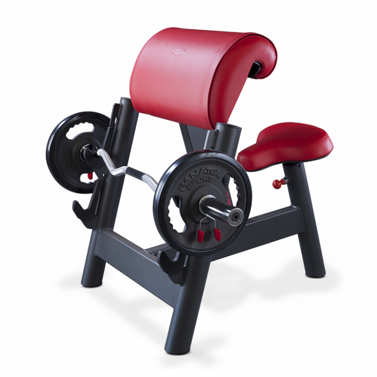 Seated Curl Bench