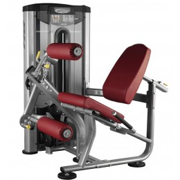 Leg Extension and Leg Curl L020