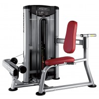 Seated Calf L210
