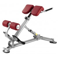 Back Extension / 40° Incline Bench L805